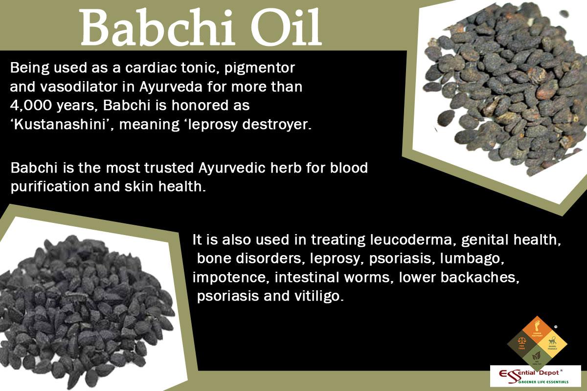 Babchi-Oil-banner