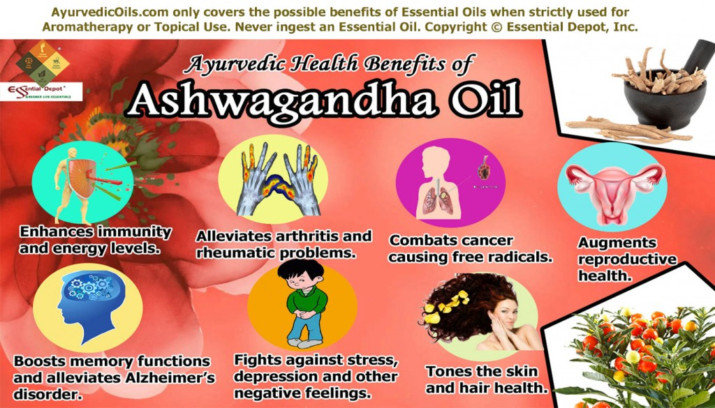 Health Benefits Of Ashwagandha Essential Oil Essential Oil