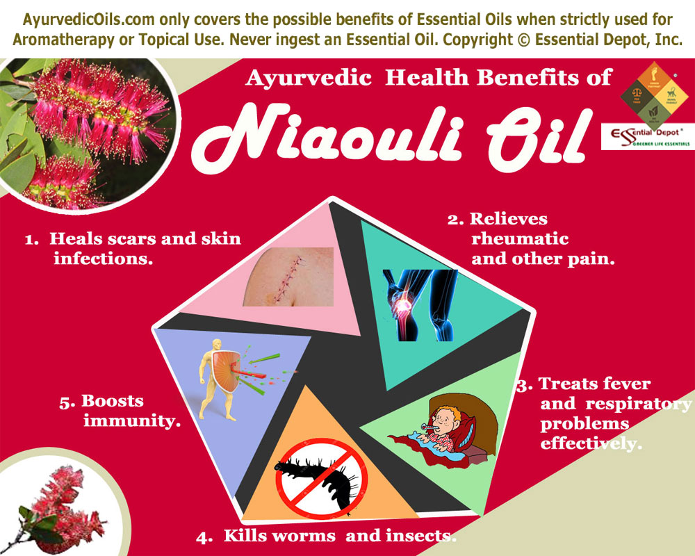 Naouli-oil-broucher