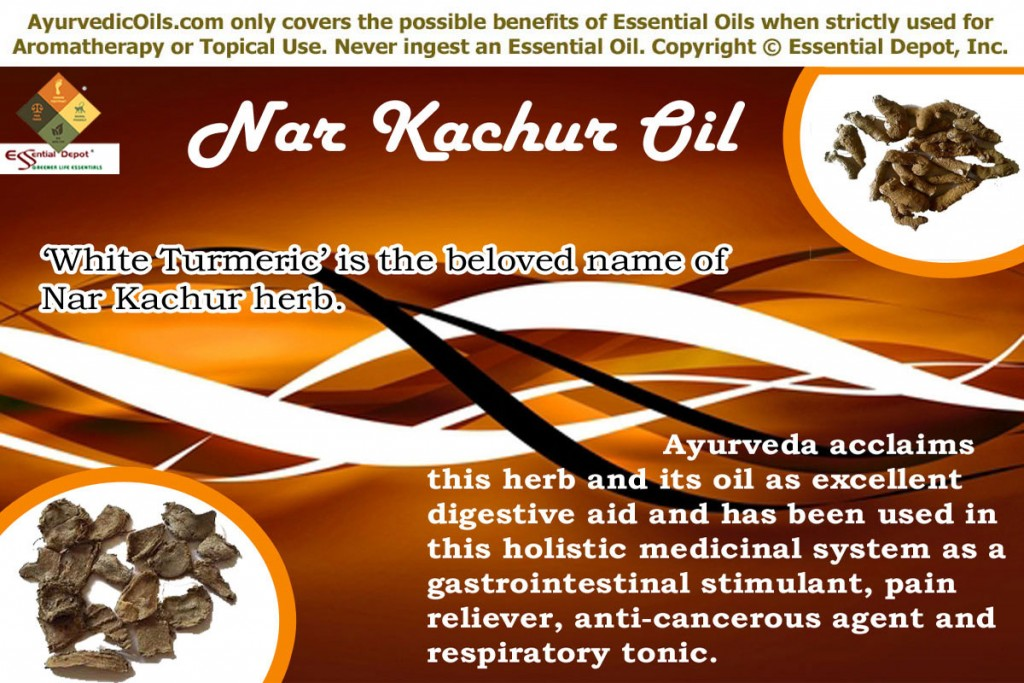 Nar-katchur-banner