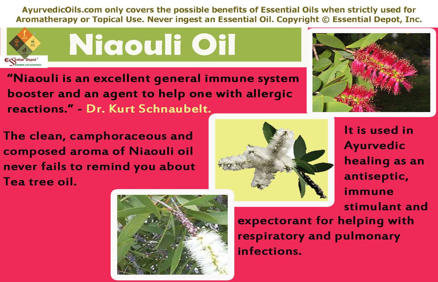 mildest essential oils