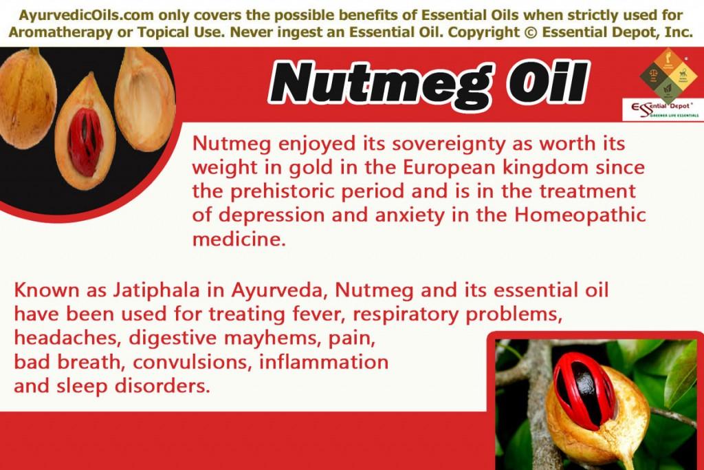 Nut meg-banner