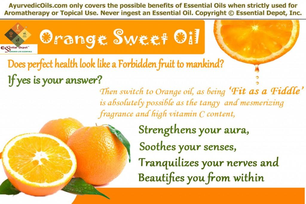 Orange-sweet-banner