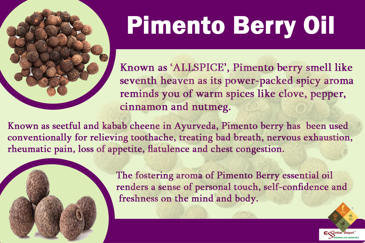 Pemento-Berry-banner