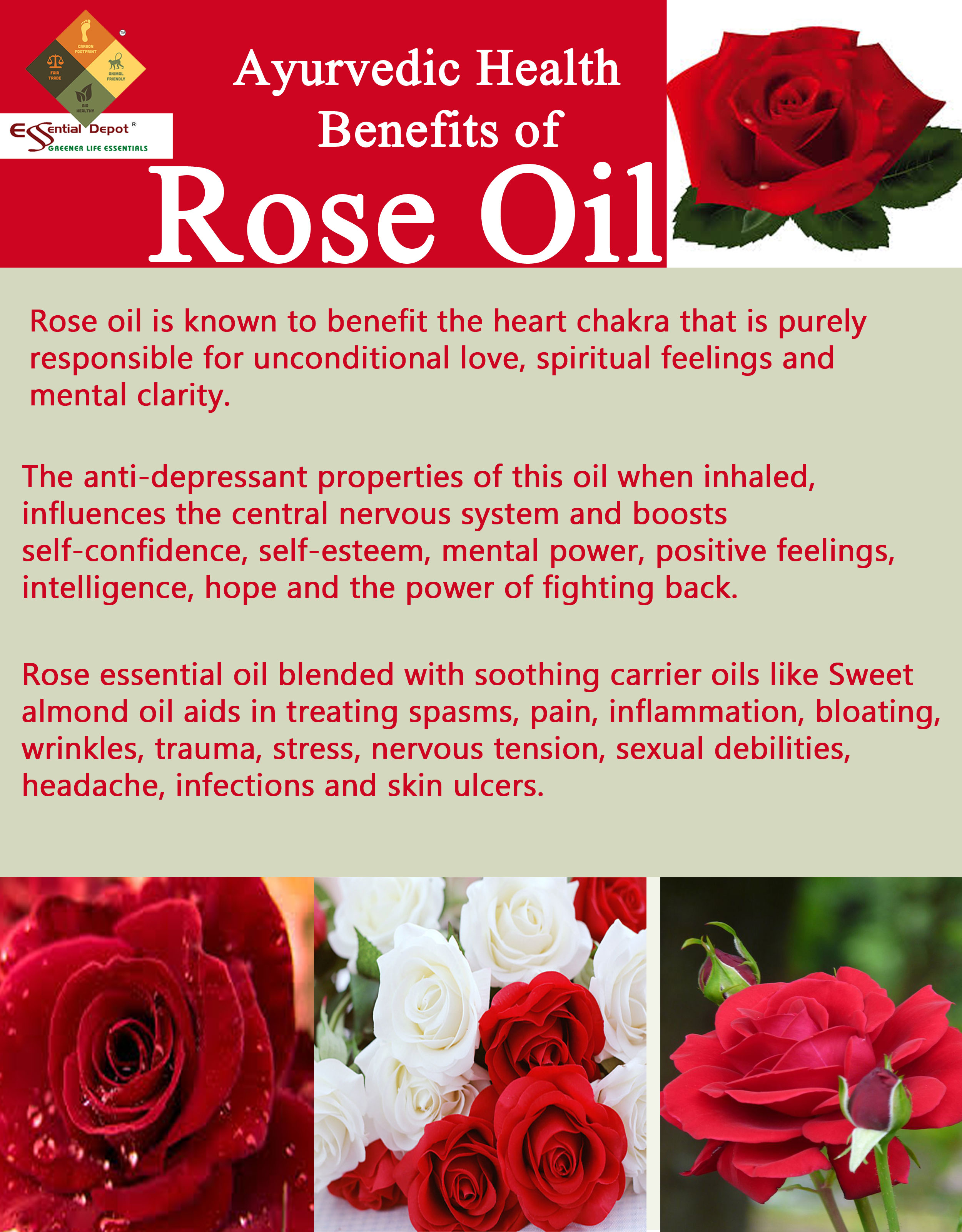 rose-oil-brocher