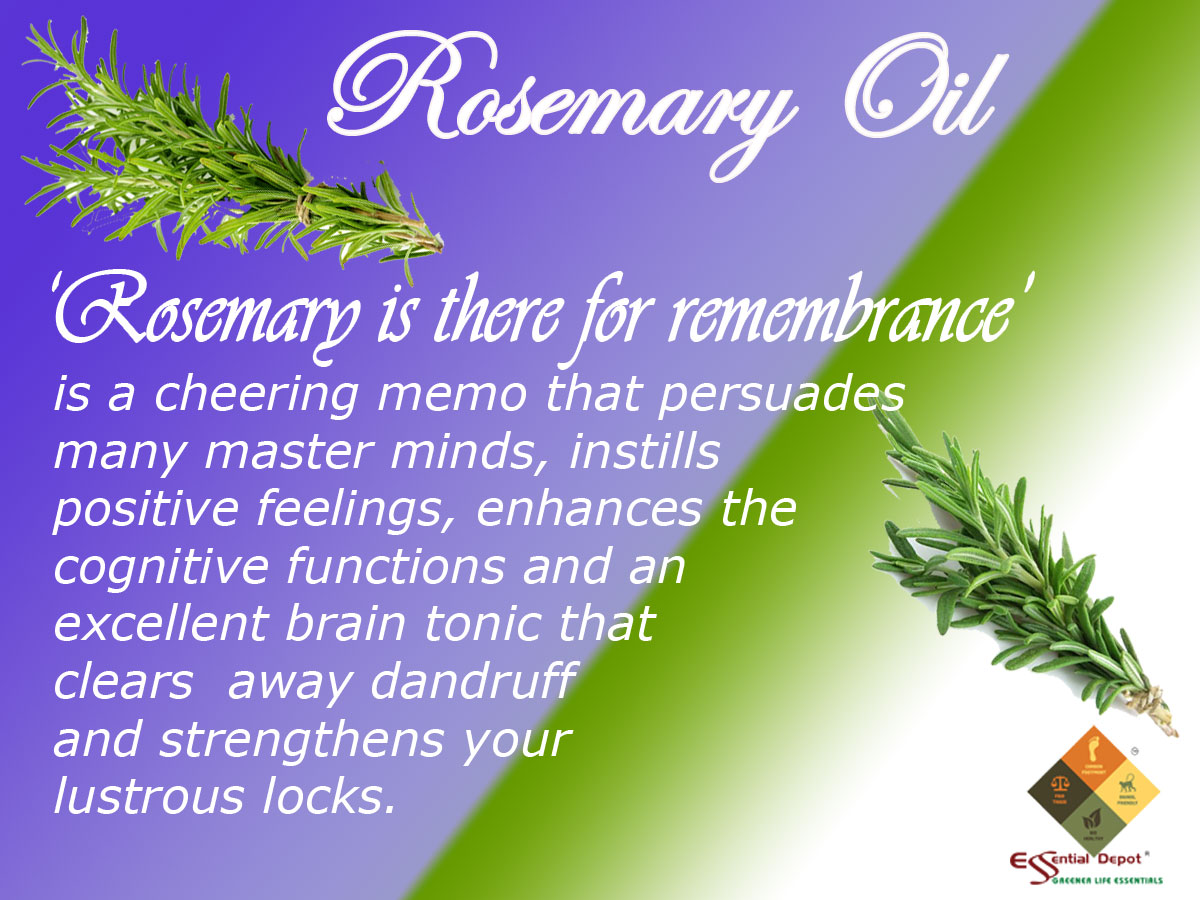 rosemary-new-bnr