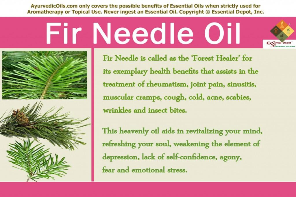 Fir-needlle-banner