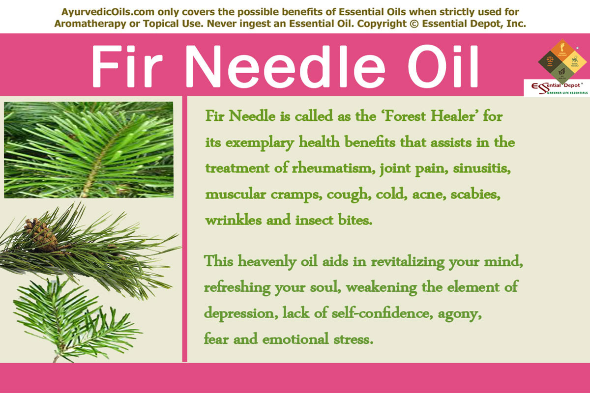 Fir oil - use for the benefit of beauty and health 43