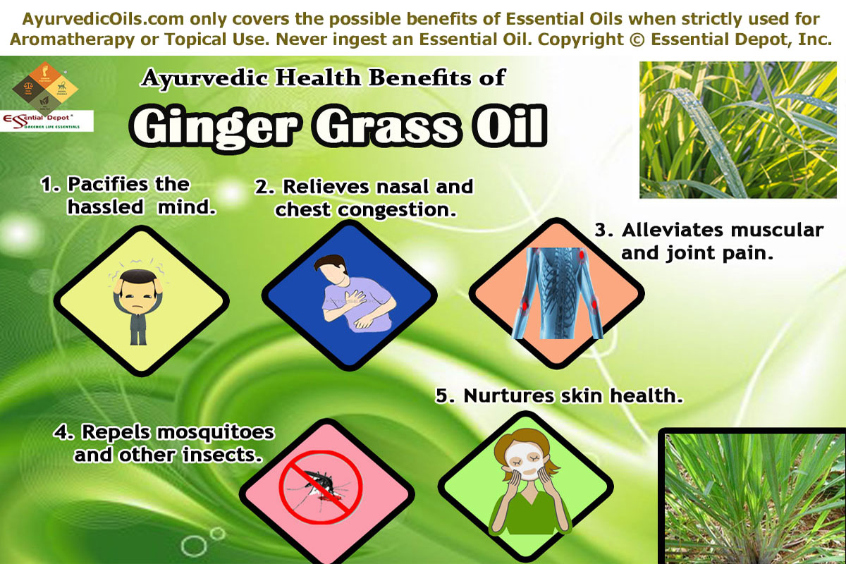 Health benefits of Gingergrass essential oil | Essential Oil