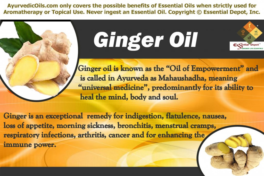 Ginger-oil-banner