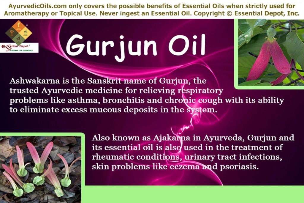 Gurjun-banner