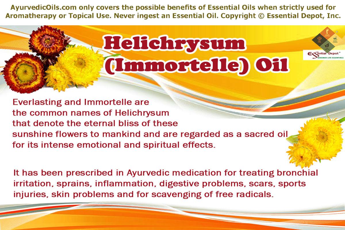 Health benefits of Helichrysum essential oil | Essential Oil