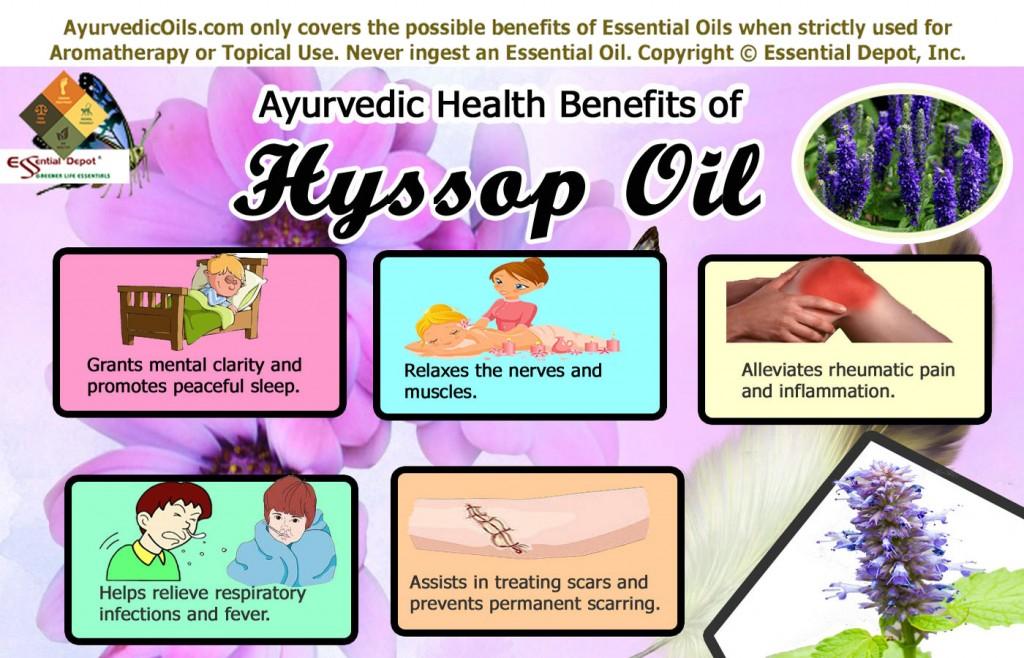 Hyssop-broucher-info