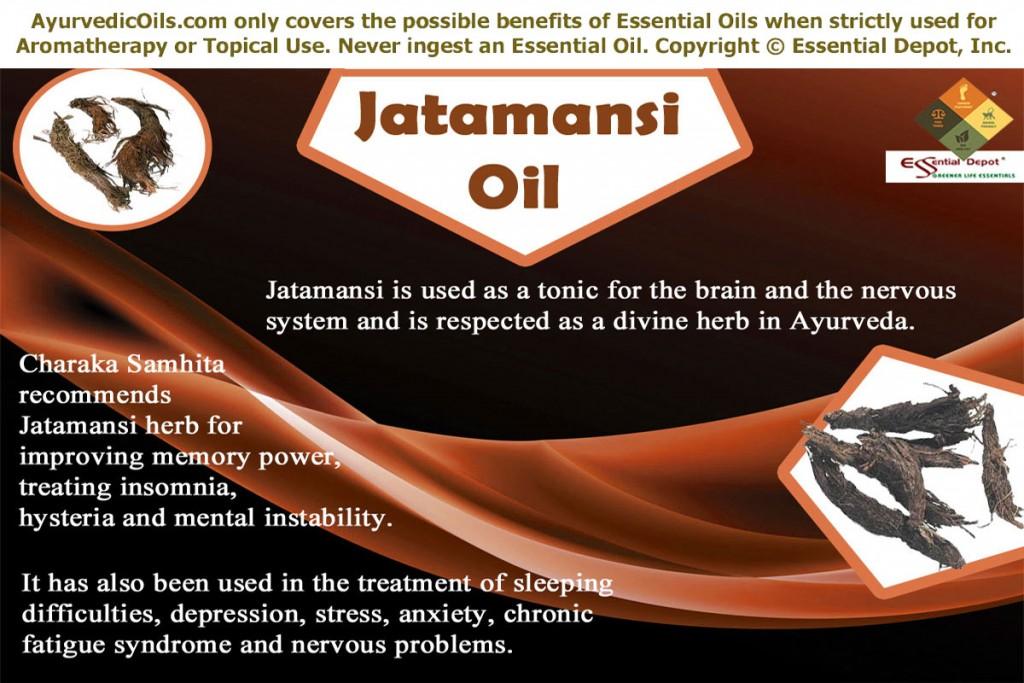 Jatamansi-banner
