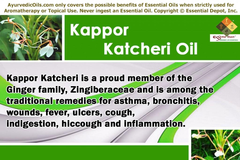 Kapoor-katcheri-banner