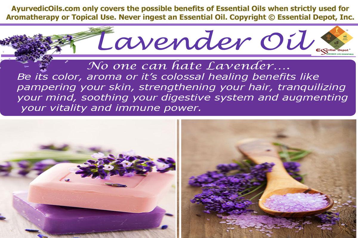 Ayurvedic Uses Of Lavender Essential Oil Essential Oil
