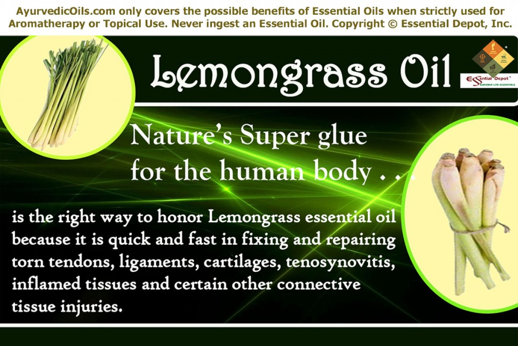 Lemon-grass-banner