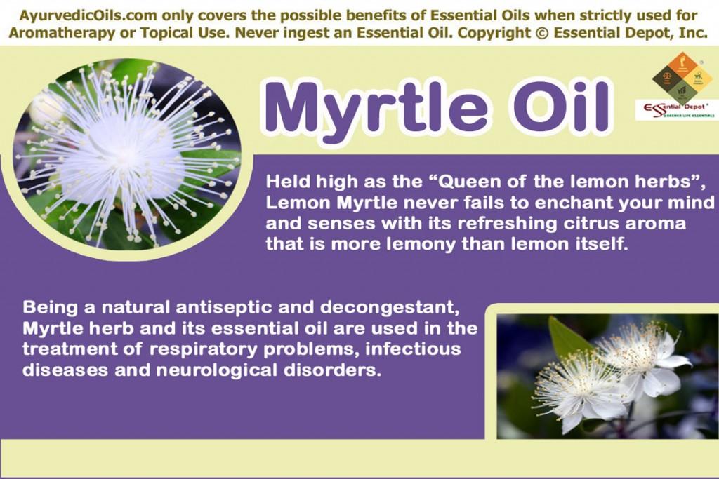 Myrtle-banner