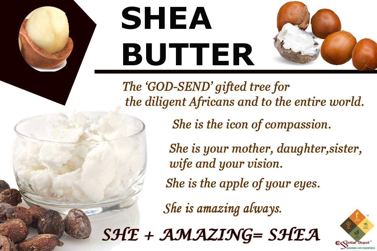 SHEA-banner