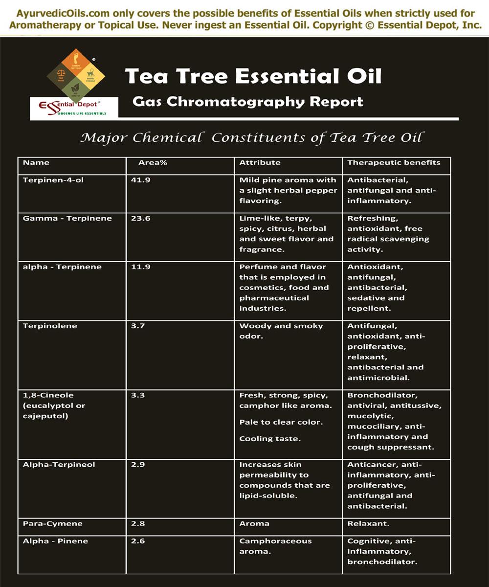 Tea Tree Essential Oil   Essential Oil