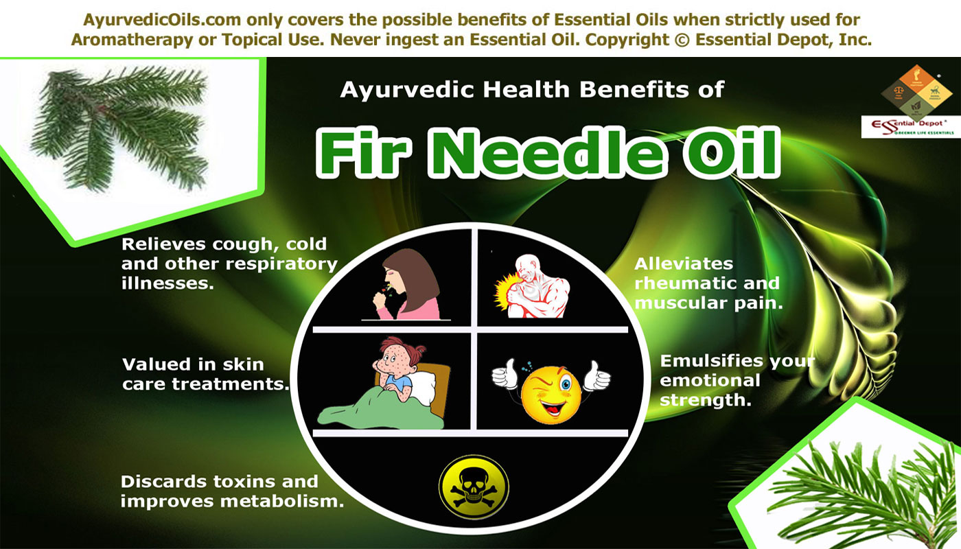 Fir oil - use for the benefit of beauty and health 12