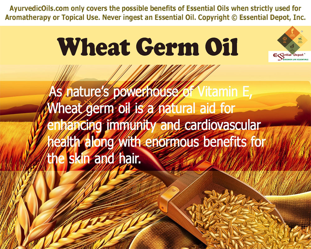 wheat-germ-oil-banner