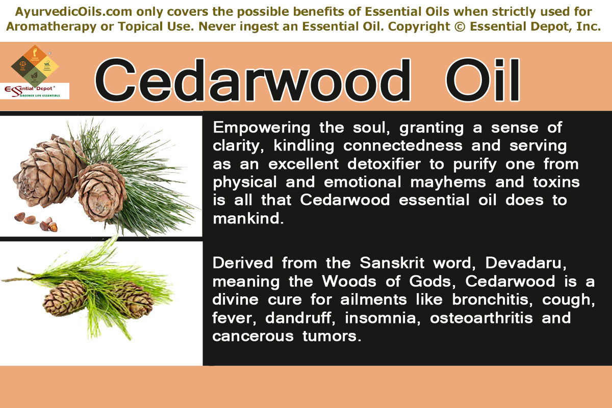Chemical Constituents Of Cedarwood Oil Essential Oil