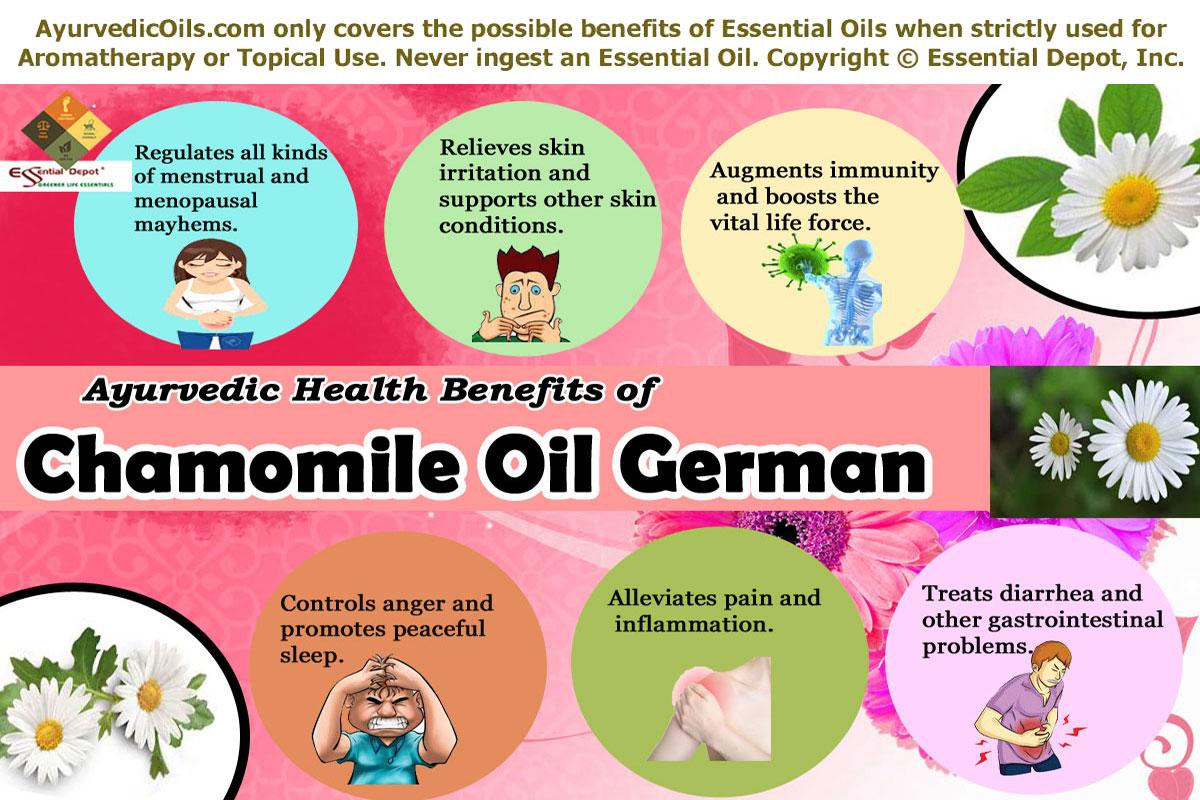 German Chamomile Essential Oil Essential Oil