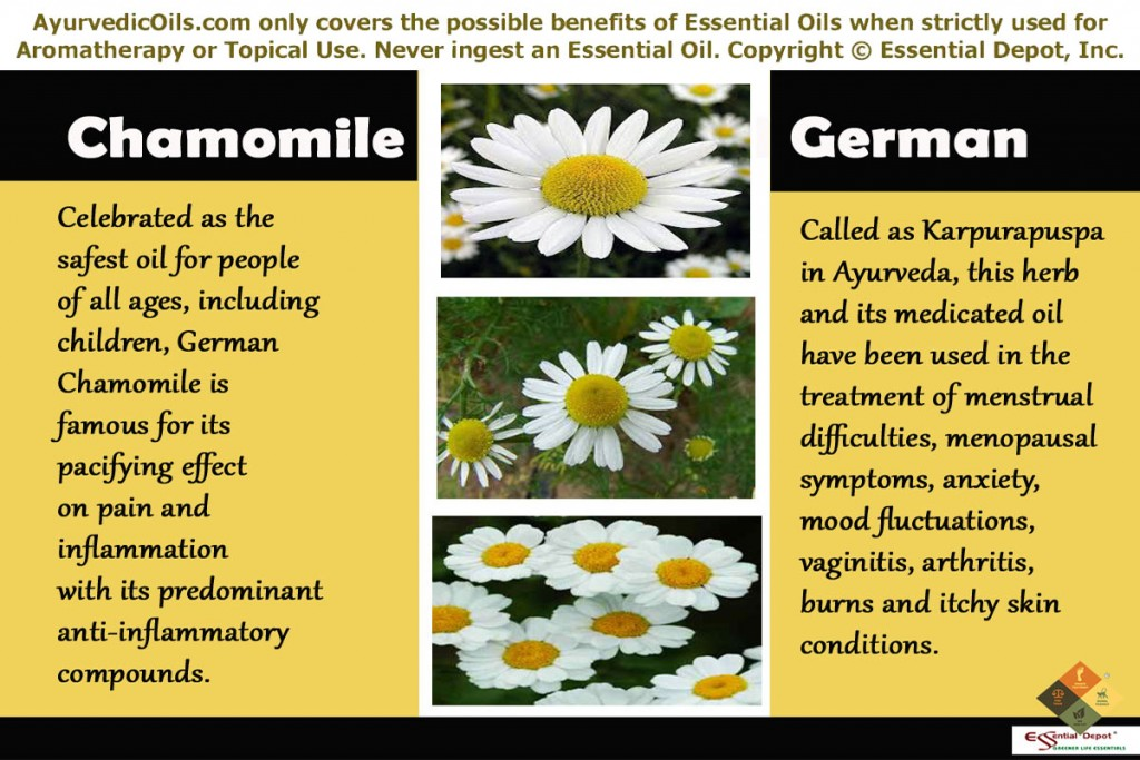 Chamomile-oil-german-banner