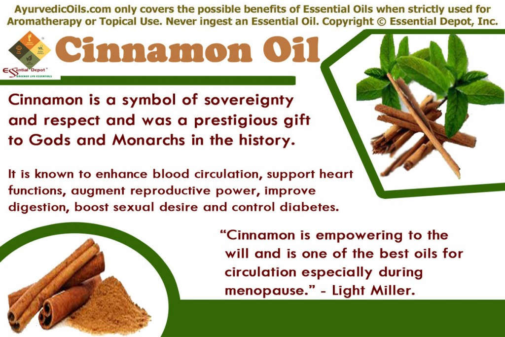 Uses of Cinnamon oil | Essential Oil