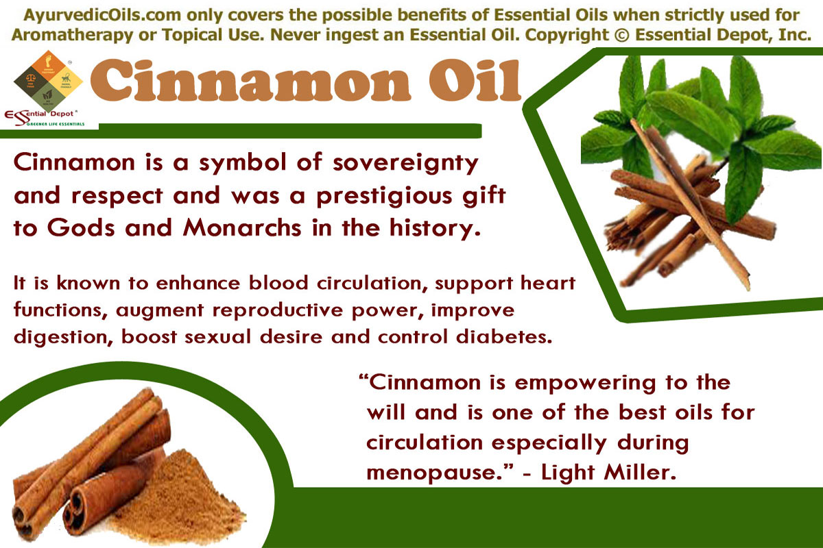 Ayurvedic Health Benefits Of Cinnamon Essential Oil