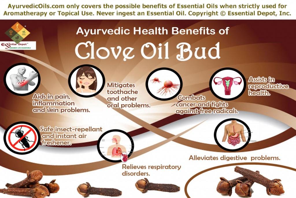 Clove-oil-bud-broucher