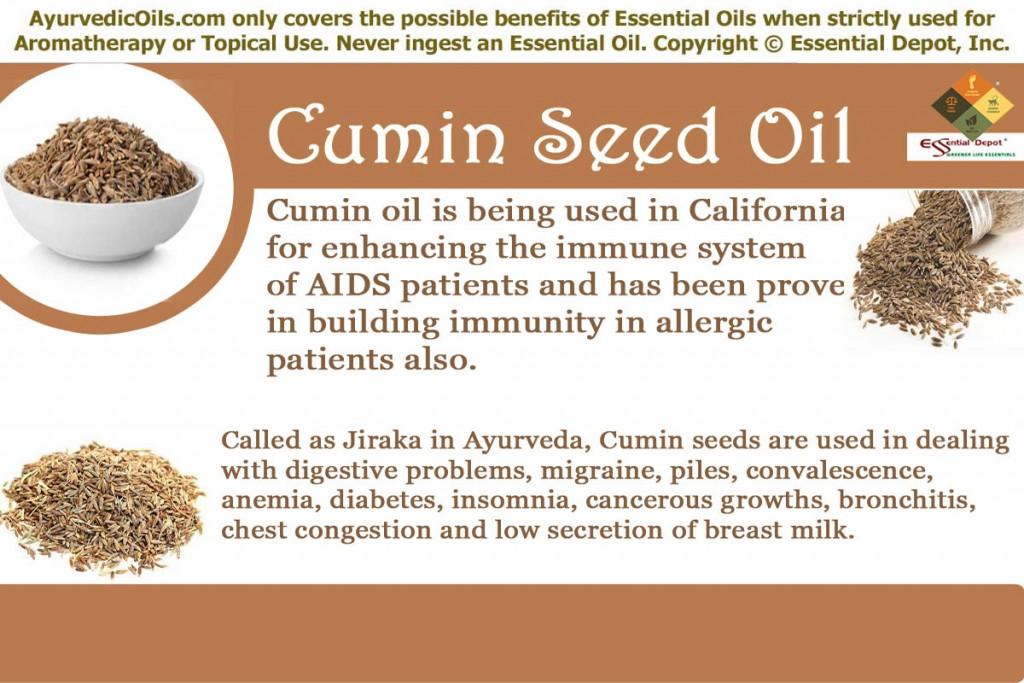 Cumin-seed-banner