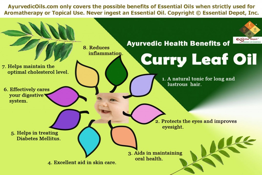 Curry-leaf-broucher