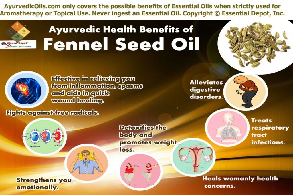 Fennel-seed-broucher