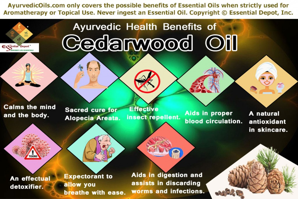 cedarwood-oil-broucher