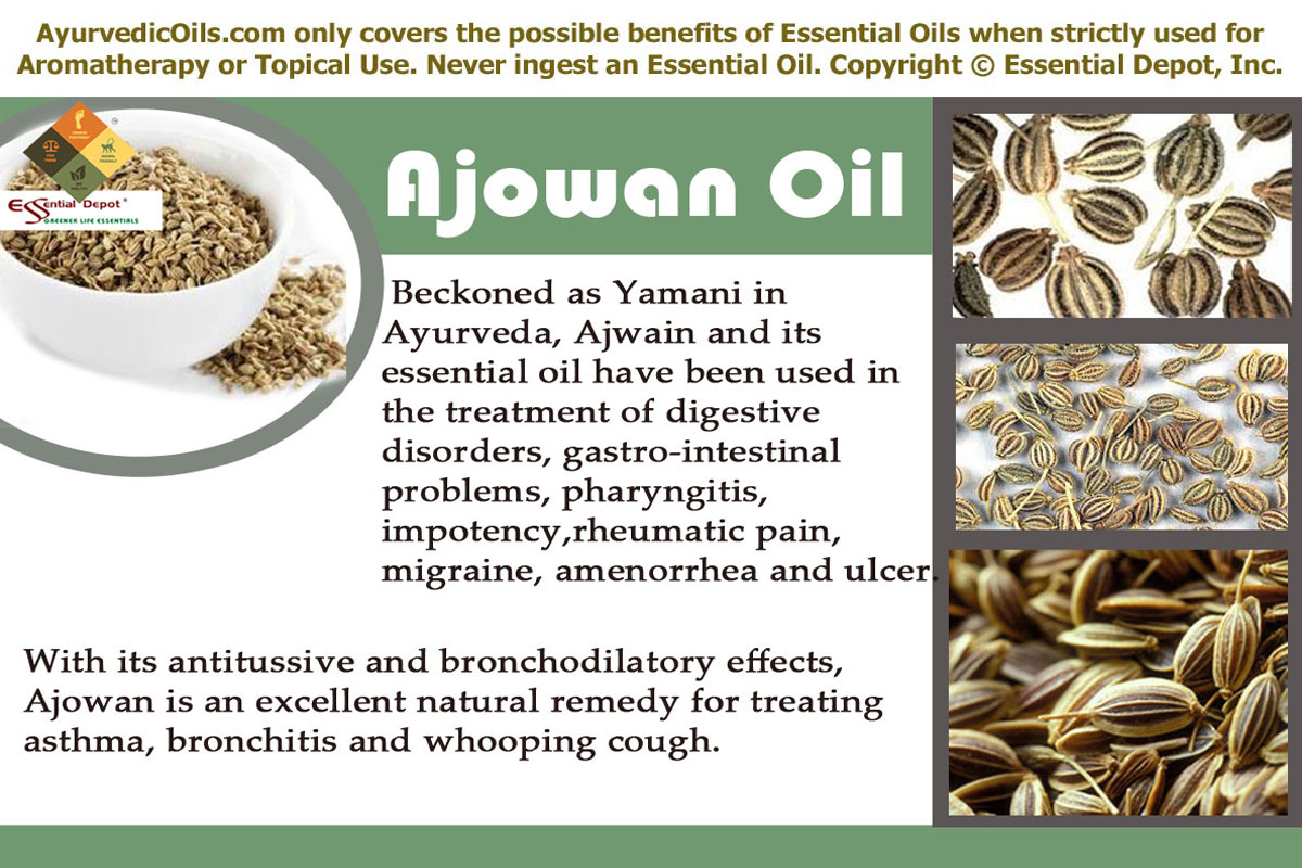 how to use ajwain oil