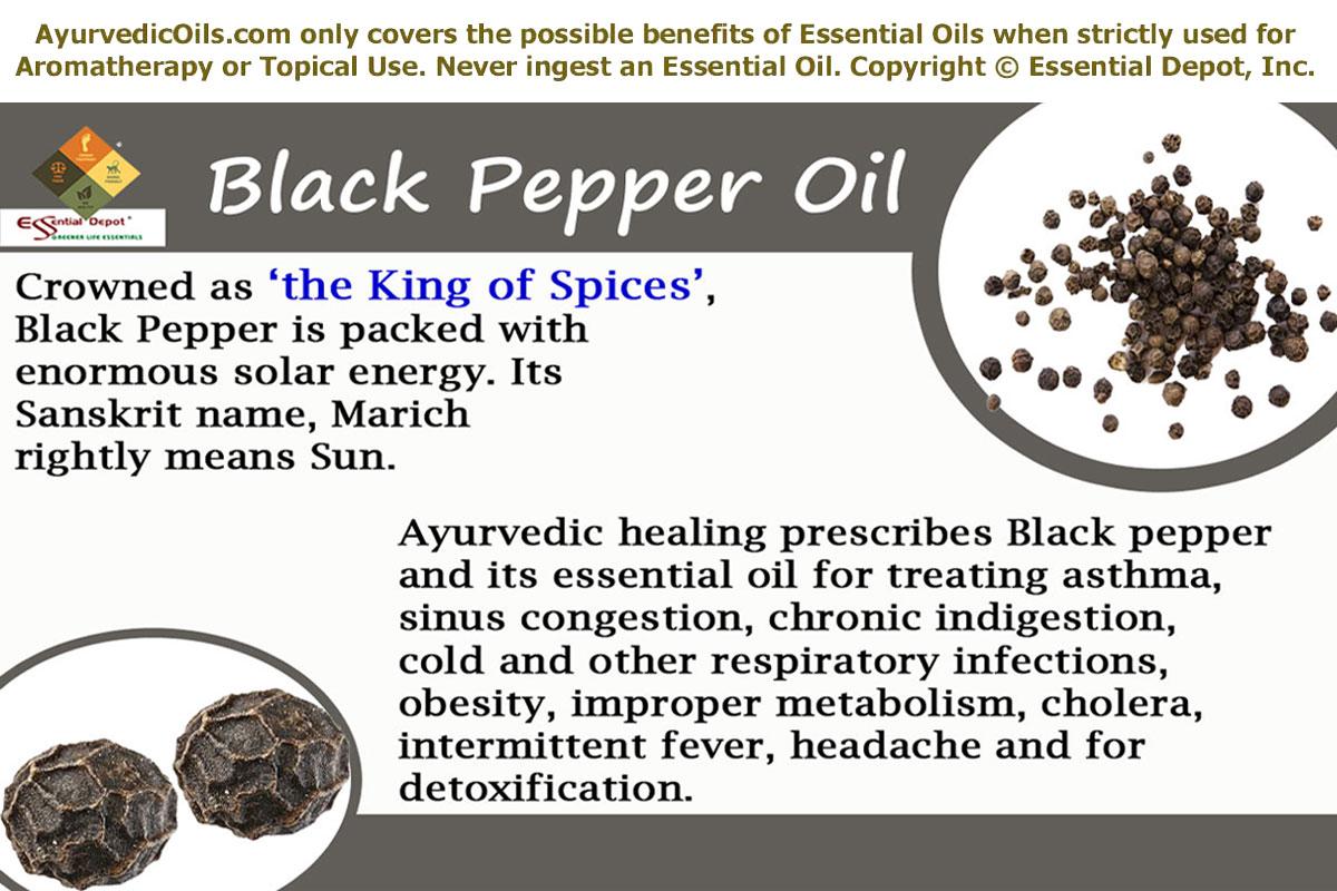 Black Pepper Oil   Essential Oil