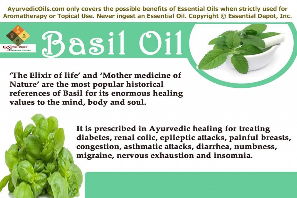 Basil-oil-banner
