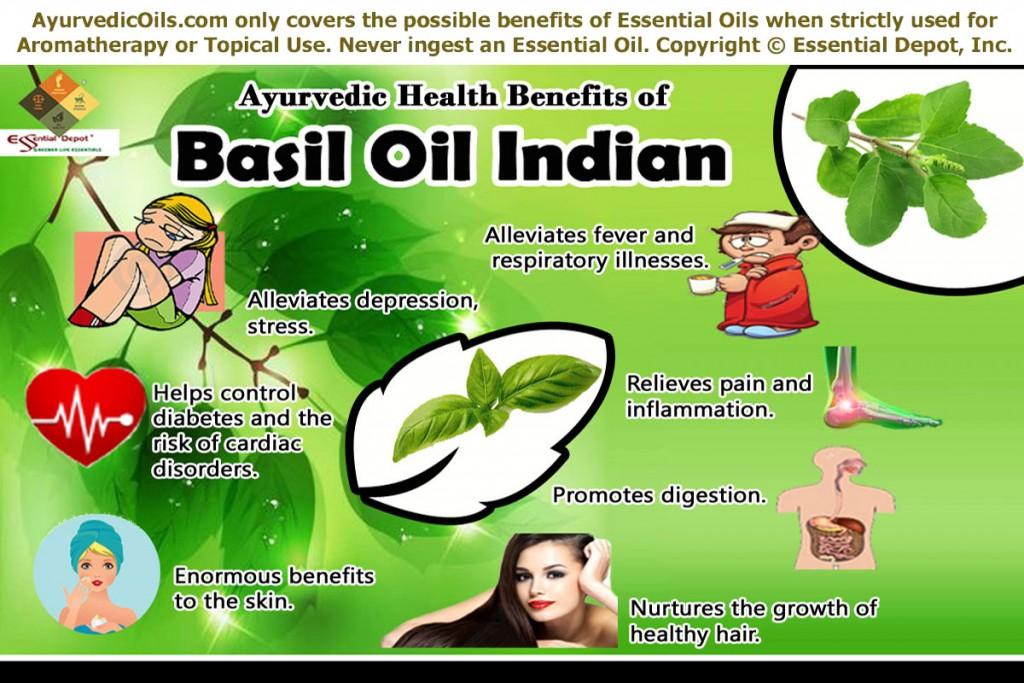 Basil-oil-bro