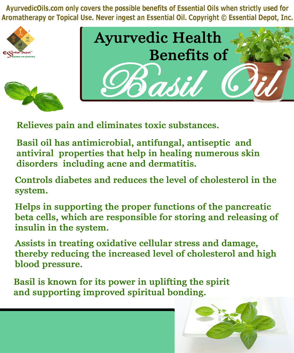 Health benefits of Basil oil | Essential Oil