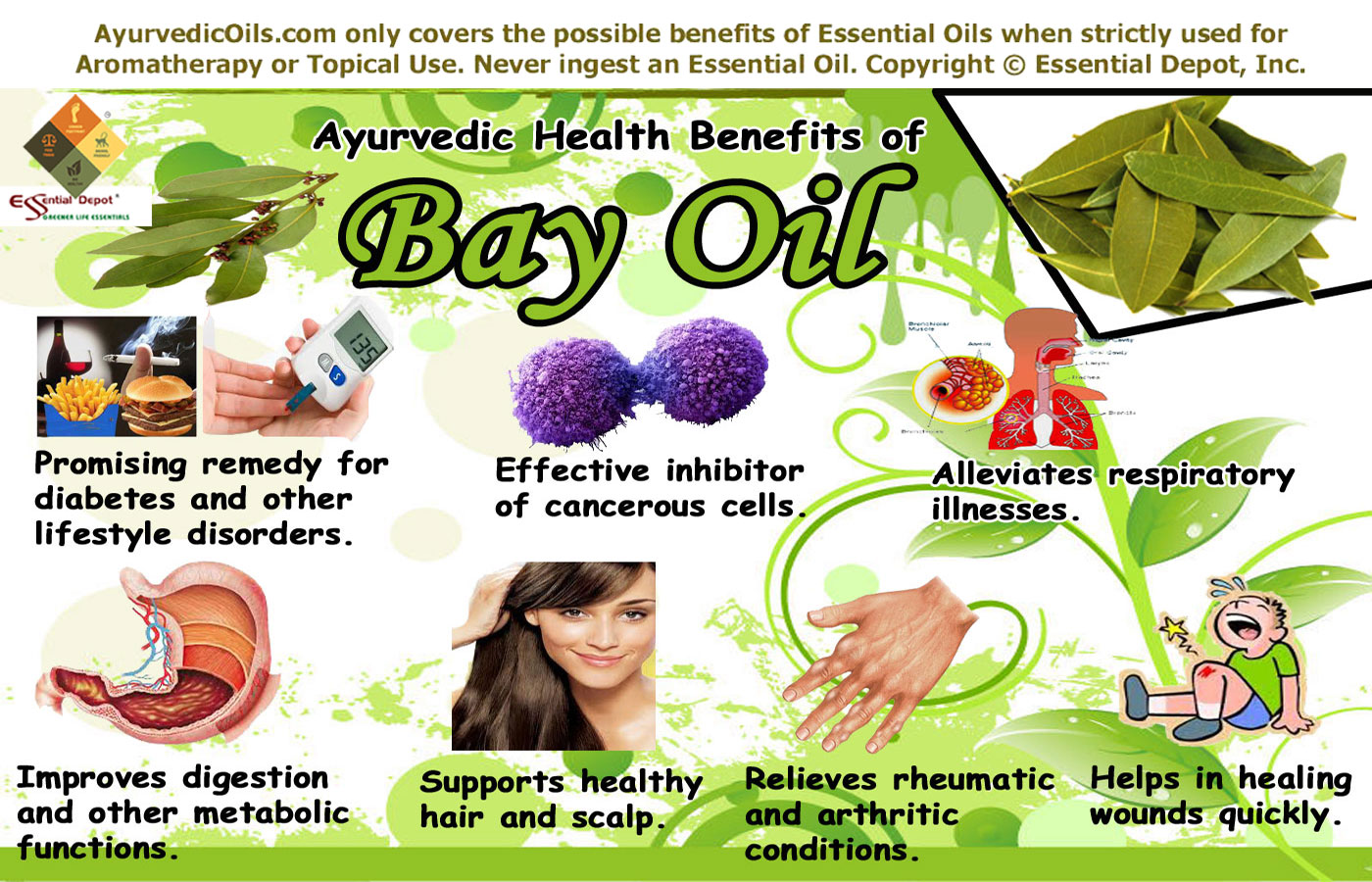 Allergy: bay leaf treatment for children and adults 83