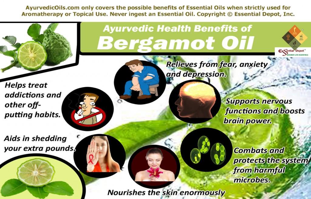 Bergamot-broucher--info-