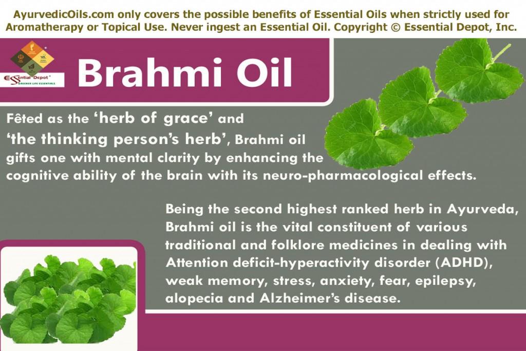 Uses of Brahmi oil | Essential Oil