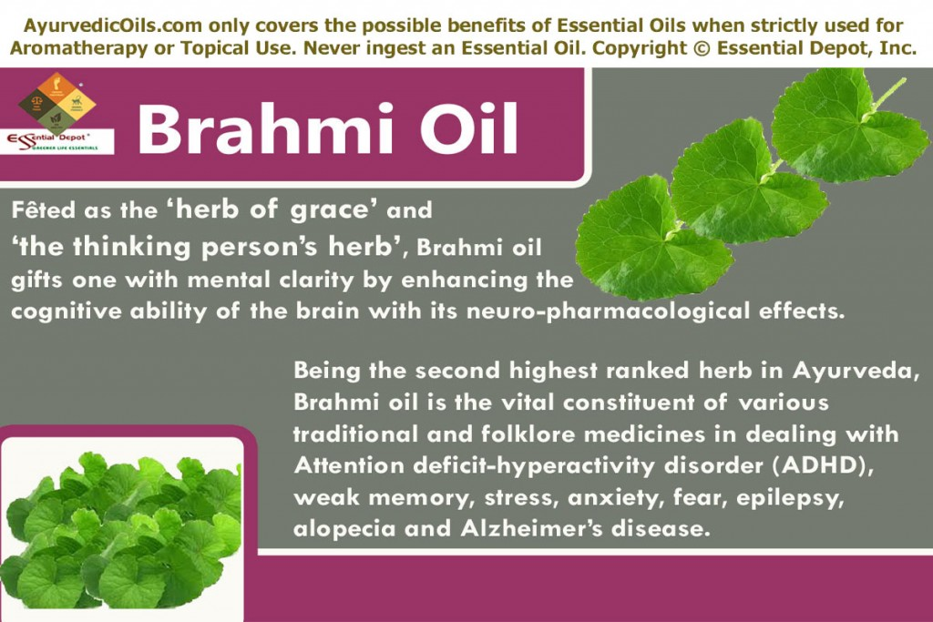 Brahmi-banner