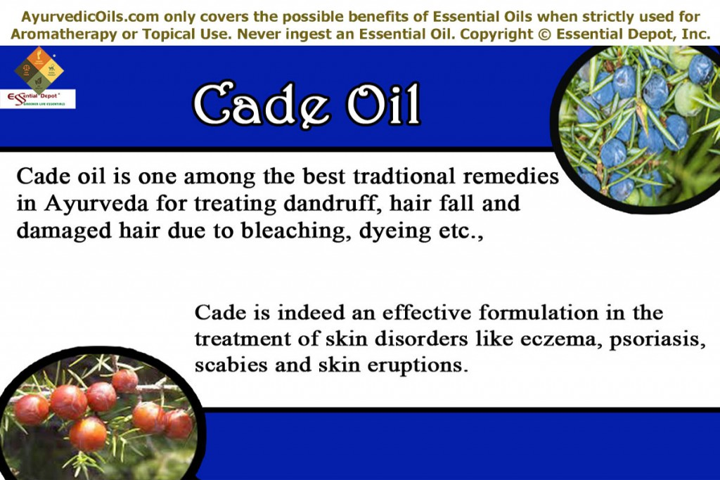 Cade-oil-banner