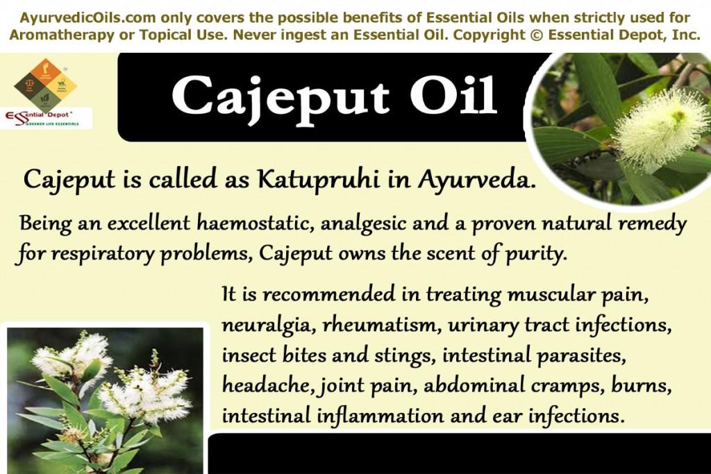 Cajeputoil-banner