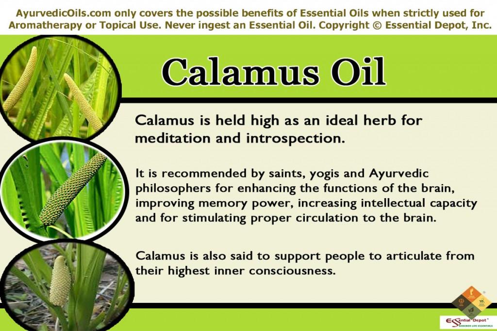 Calamus-banner