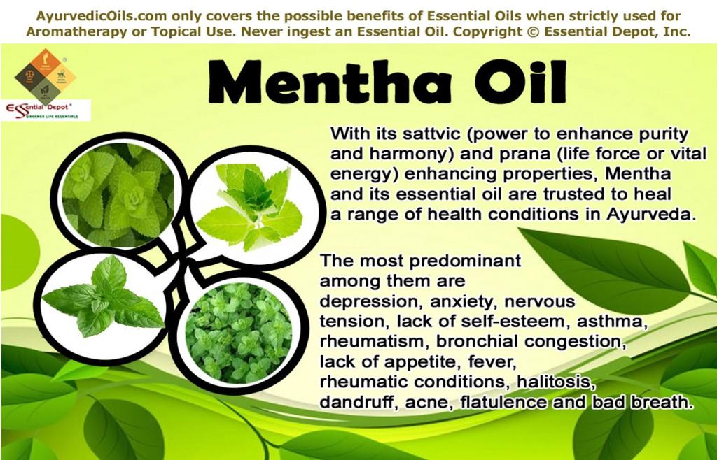 Mentha-oil-broucher