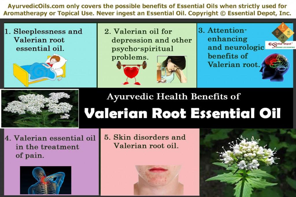 Valerian-root-broucher